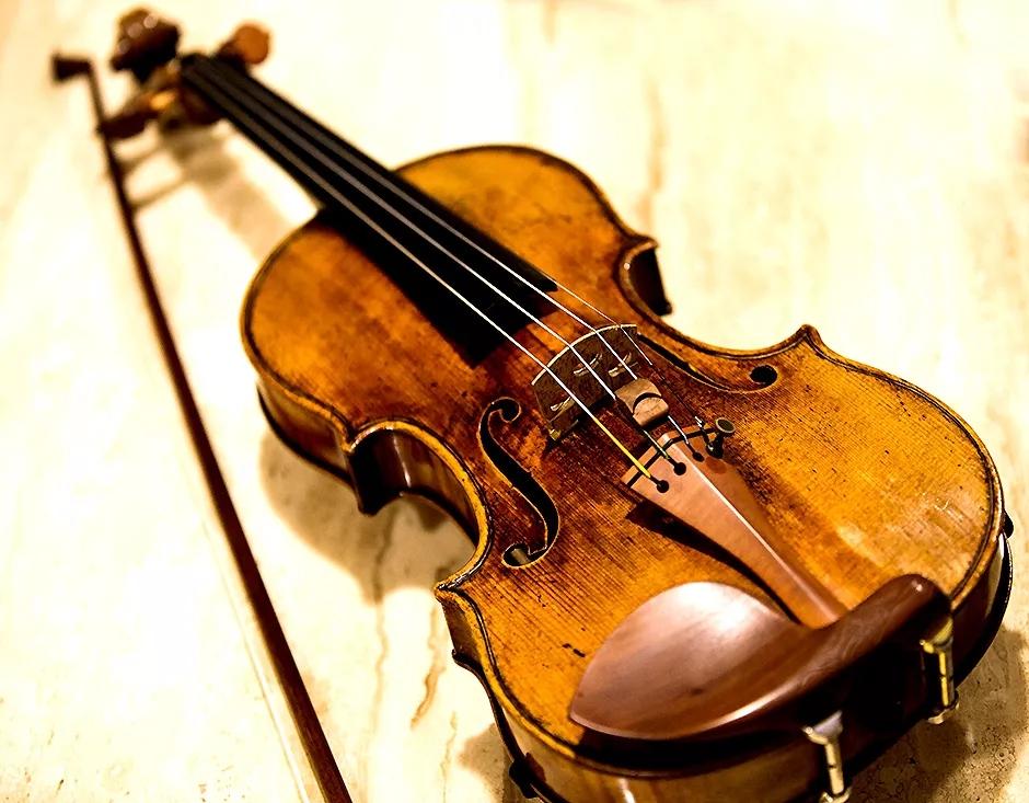 Violin Humidifier/Dehumidifier: Get M...